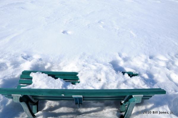 1-snow 2-19-10 088
